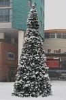 Julgran Giant Tree 4,4-12,1 m hög. Enkel att montera & snabb leverans. Högkvalitativ konstgran - ute och inne! OBS! På bilden har granen snö på sig.